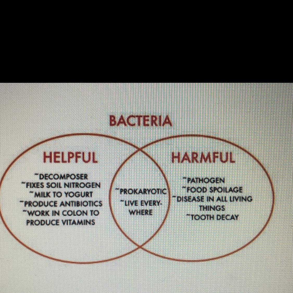 Bacteria And Virus Venn Diagram The Venn Diagram Details Some Of The Helpful And Harmful Effects Of