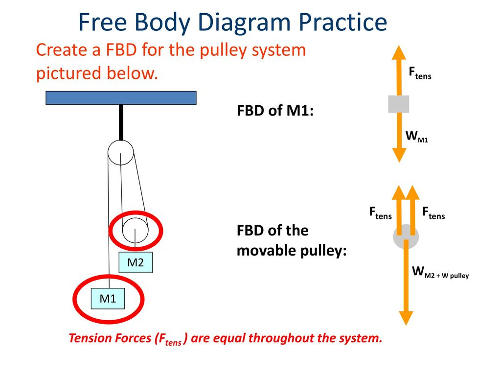 Free Body Diagram Forces And Free Body Diagrams Ppt Download