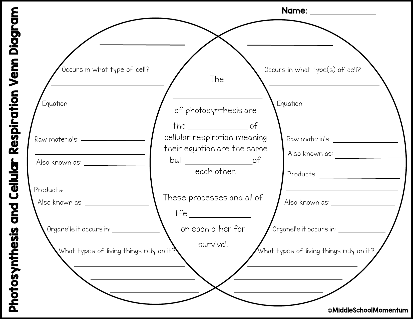 Venn Diagram Of Photosynthesis And Cellular Respiration Photocr Review