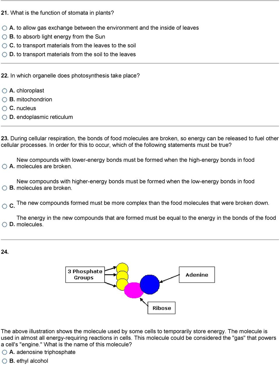 Venn Diagram Of Photosynthesis And Cellular Respiration Photosynthesis And Cellular Respiration Worksheet Luxury