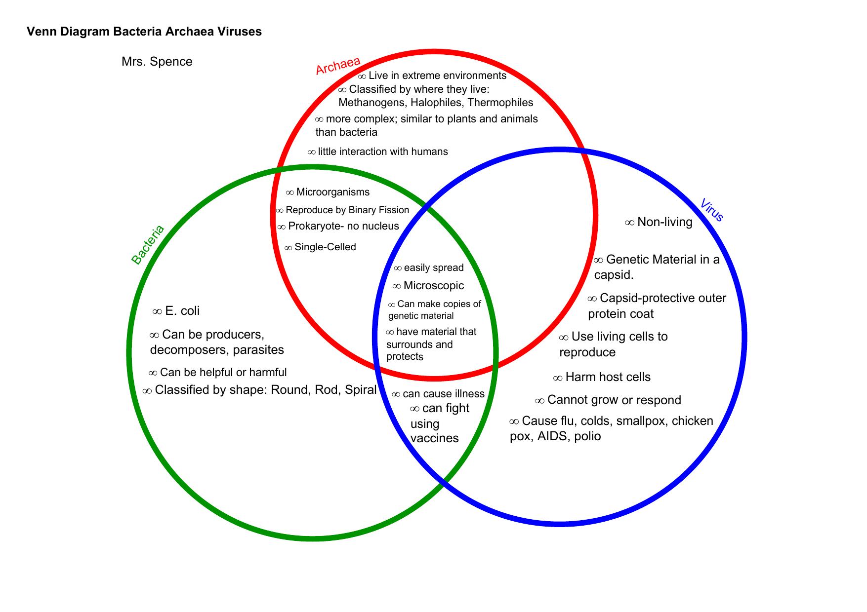 Bacteria And Virus Venn Diagram Venn Diagram Bacteria Archaea Viruses