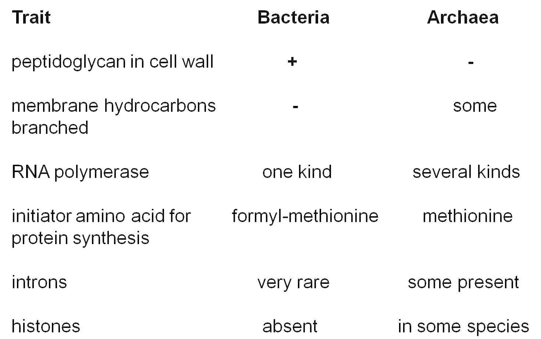 Bacteria And Virus Venn Diagram Virus Vs Bacteria Similarities