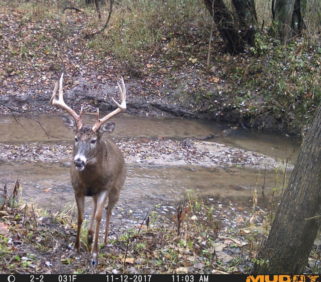 Deer Stand Placement Diagrams Deer Hunting Archives Muddy Outdoors