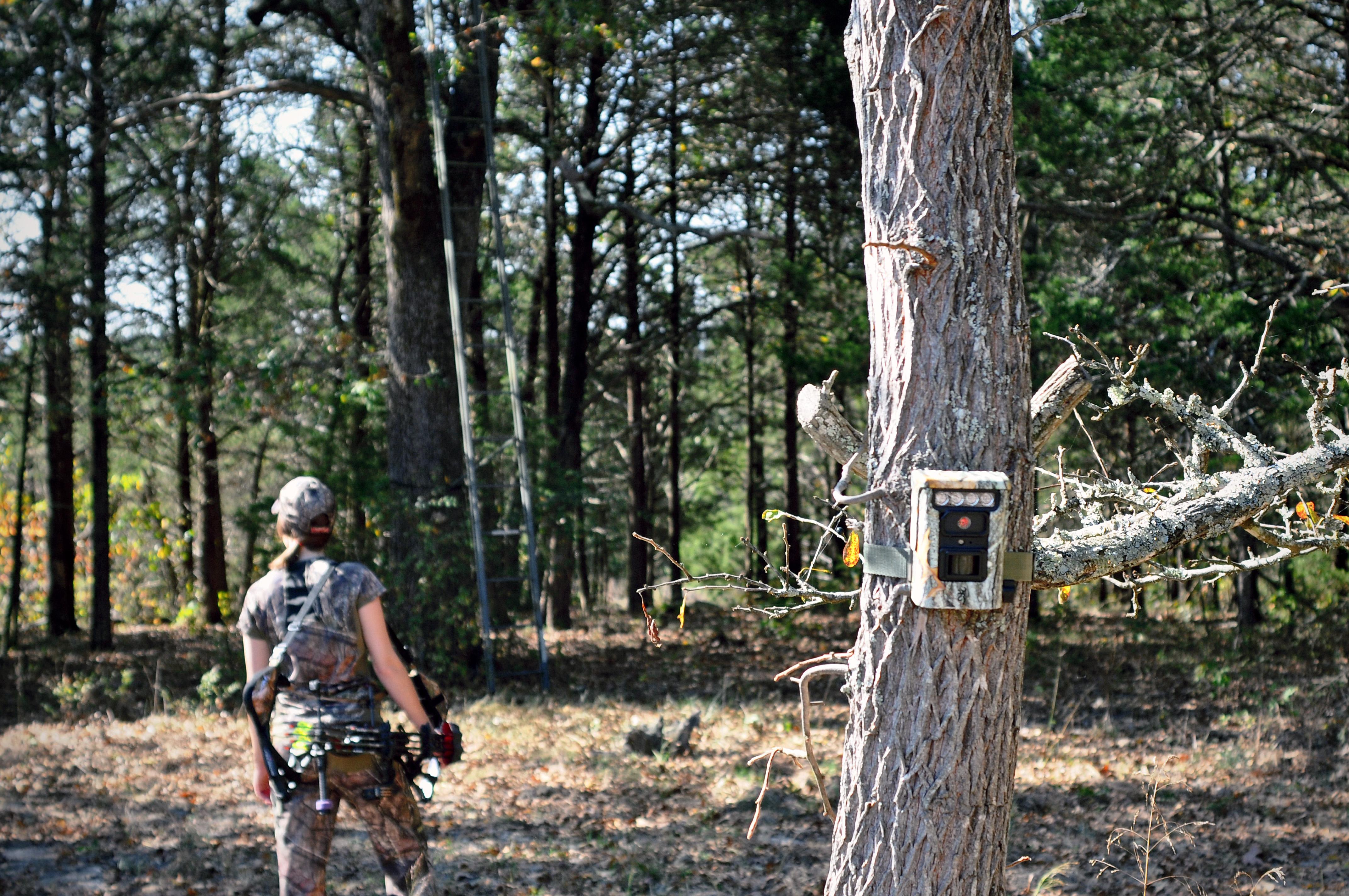Deer Stand Placement Diagrams Deer Season Browning Trail Cameras