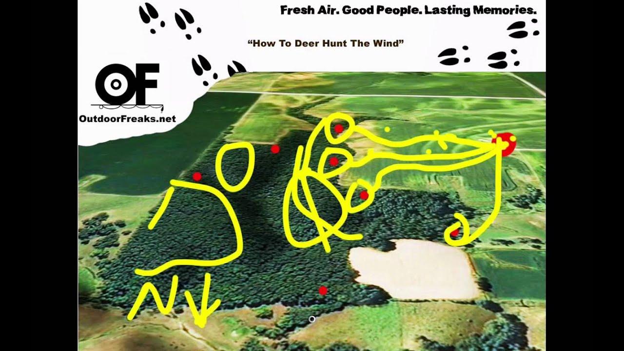 Deer Stand Placement Diagrams How To Deer Hunt The Wind Deer Hunting Tree Stand Strategies