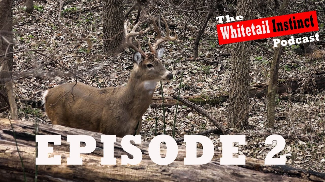 Deer Stand Placement Diagrams Tree Stand Placement Strategies For Public Land Video Podcast 2