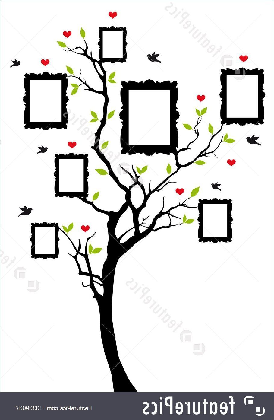 Family Tree Diagram Best Blank Family Tree Diagram Vector Photos Free Vector Art