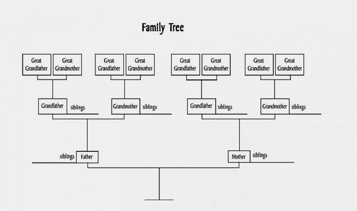 Family Tree Diagram Family Tree Diagram Template Business