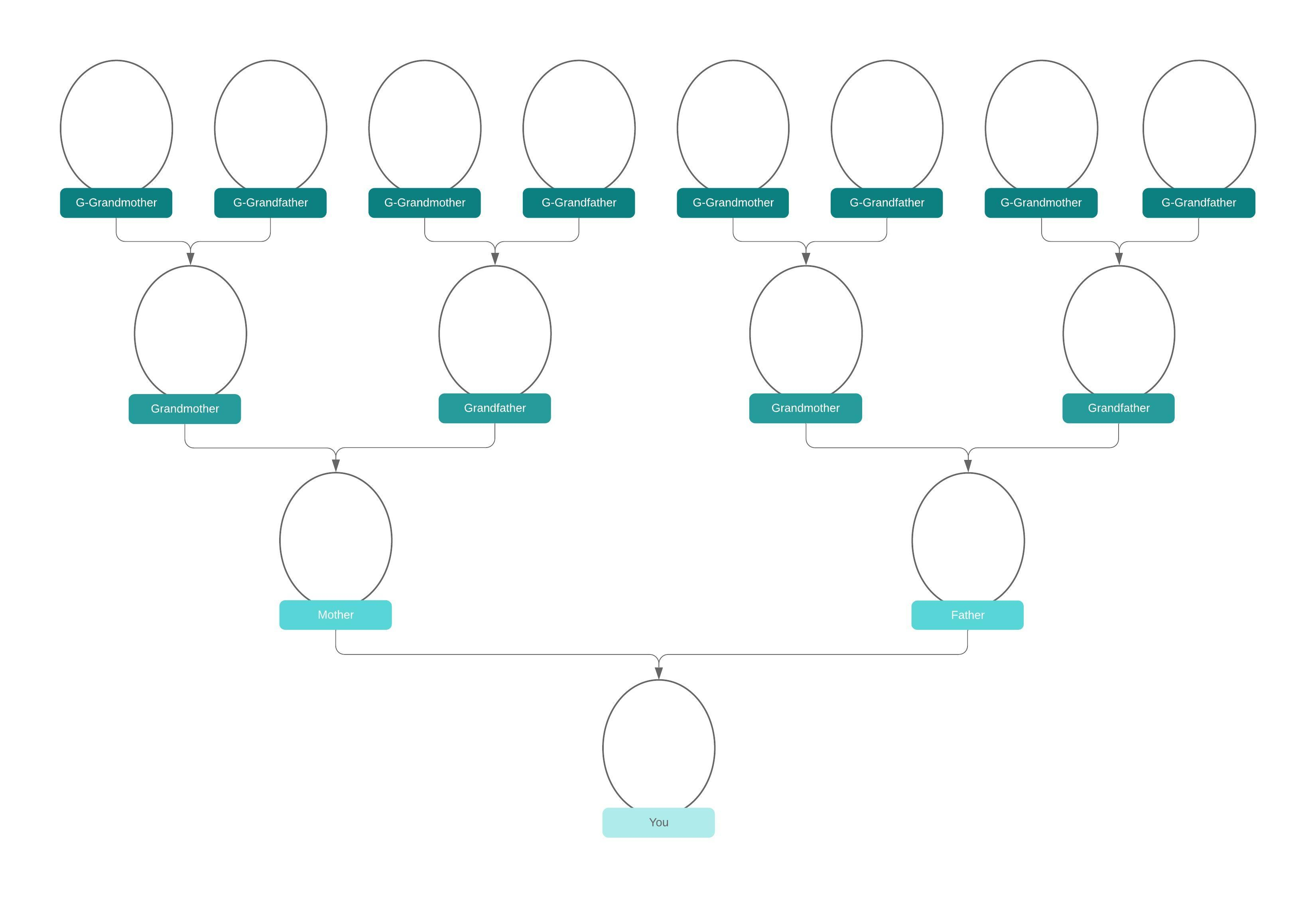 Family Tree Diagram Family Tree Generator Lucidchart