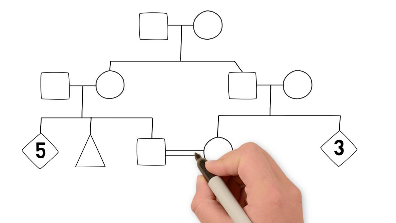 Family Tree Diagram How To Draw A Family Tree Part 1 Introduction