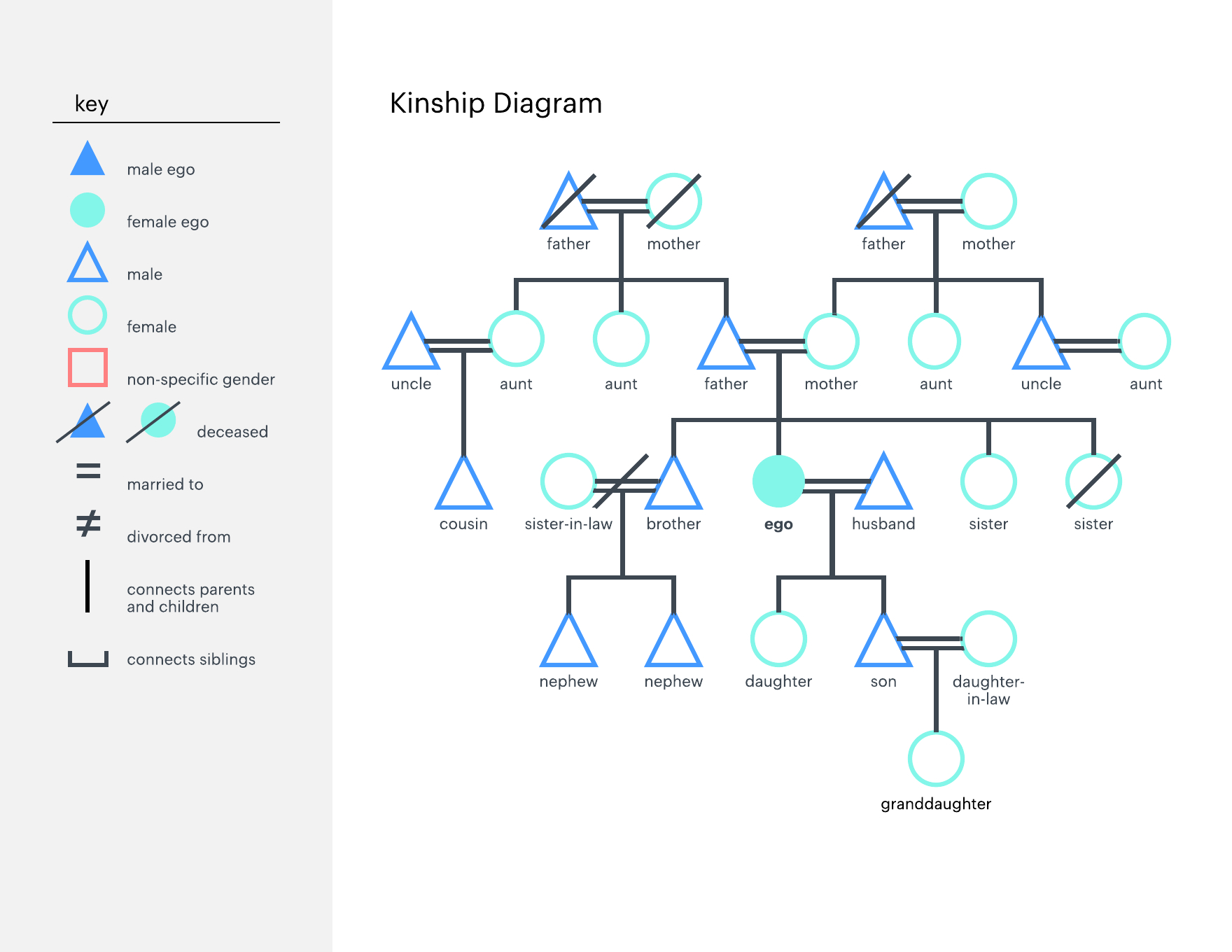Family Tree Diagram How To Make A Family Tree Chart Lucidchart Blog