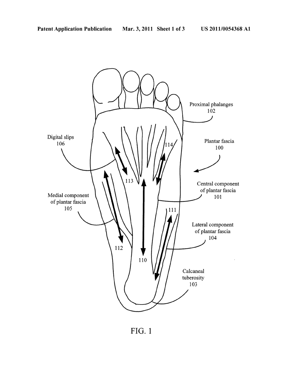 Foot Pain Diagram Foot Pain Relief Device Diagram Schematic And Image 02