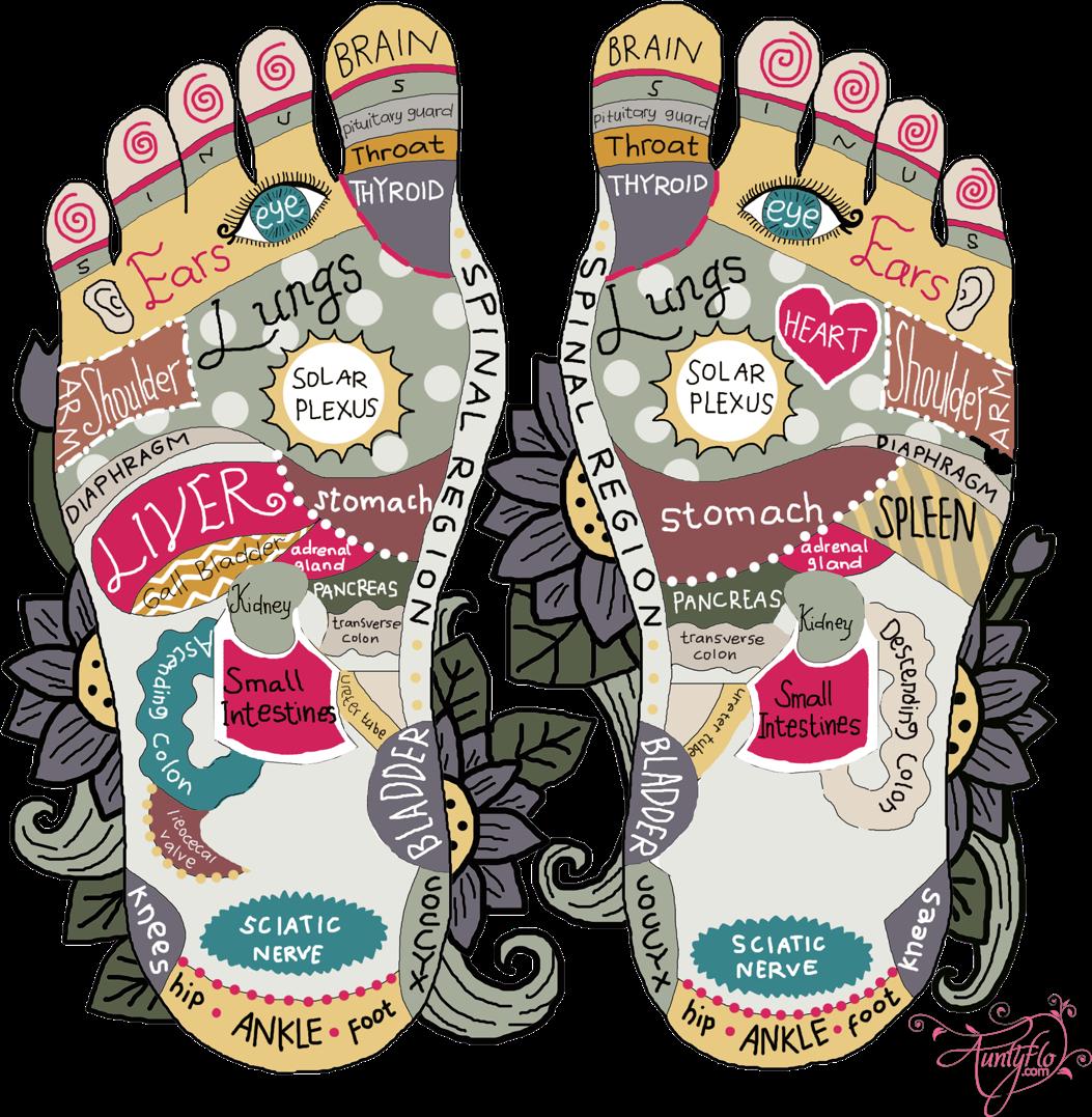 Foot Reflexology Diagram Foot Reflexology Chart Diy Foot Massage Auntyflo