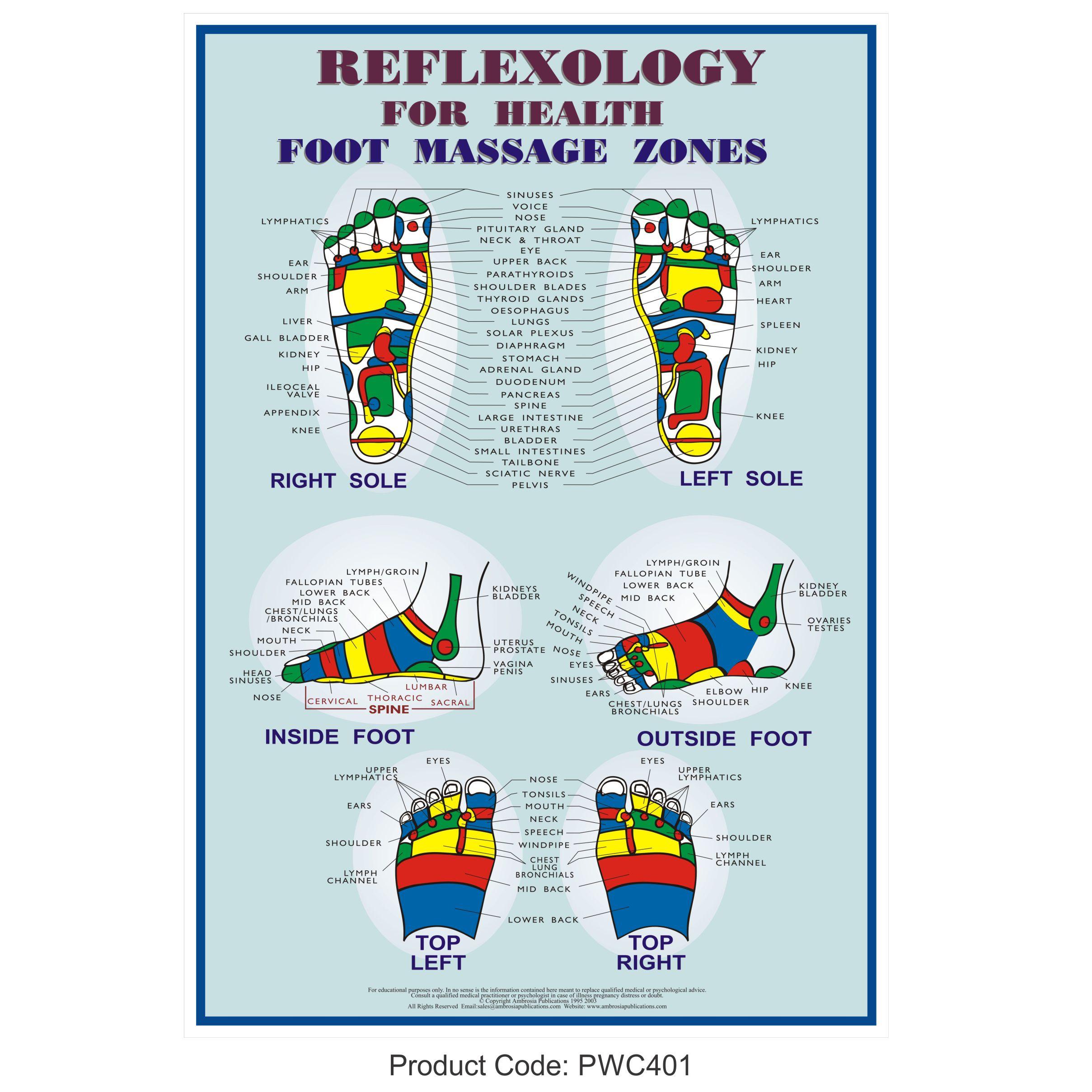 Foot Reflexology Diagram Foot Reflexology Poster