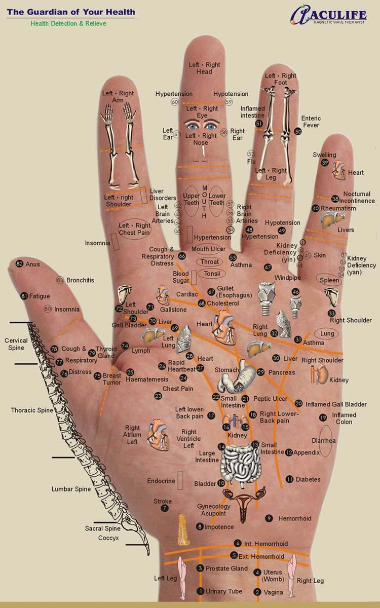 Foot Reflexology Diagram Reflexology Charts Hand Foot Ear Reflexology Chart Tips