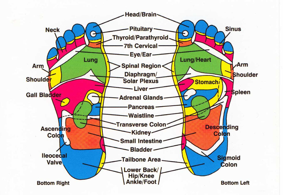 Foot Reflexology Diagram Reflexology For Ibs And Digestive Problems Magenta Therapy