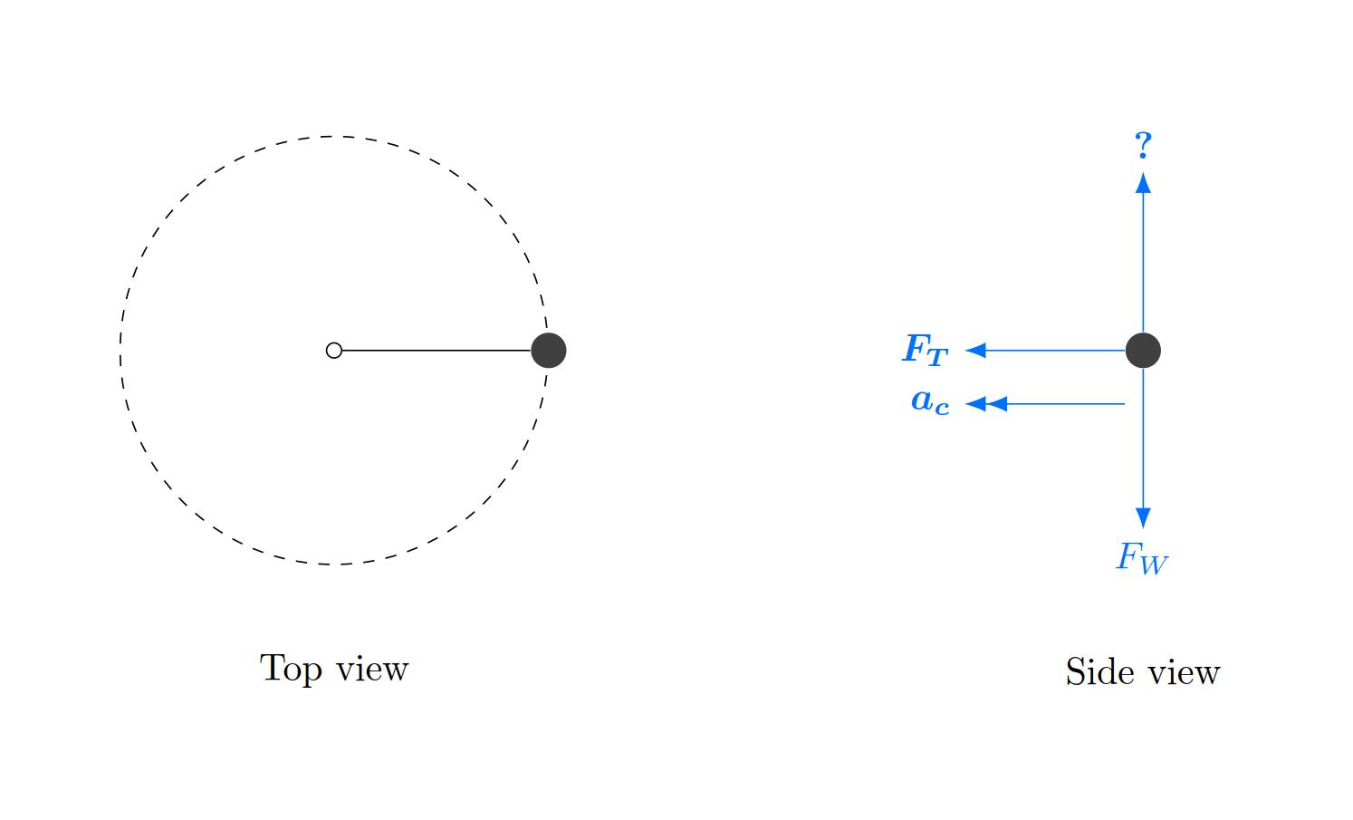 Free Body Diagrams Centripetal Force Circular Motion Free Body Diagram Physics