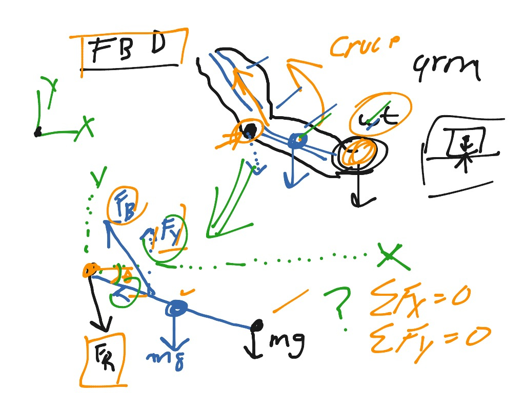 Free Body Diagrams How To Draw A Free Body Diagram Biomechanics Showme