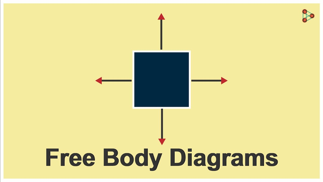 Free Body Diagrams Physics Force Free Body Diagrams