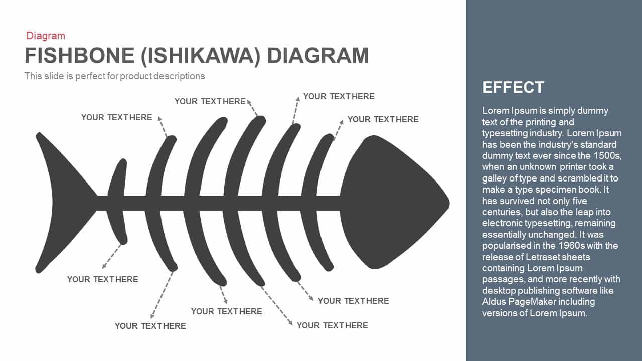 Ishikawa Diagram Template Fishbone Diagram Powerpoint Template And Keynote Slide Slidebazaar