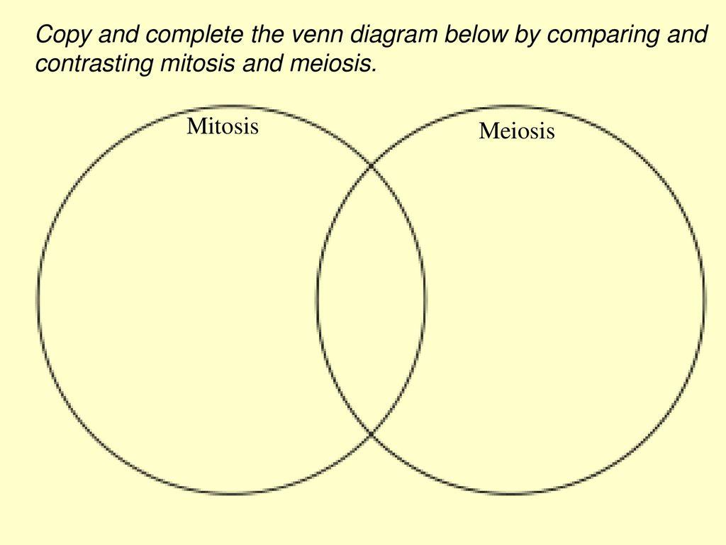 Mitosis Meiosis Venn Diagram Mitosis And Meiosis Ppt Download