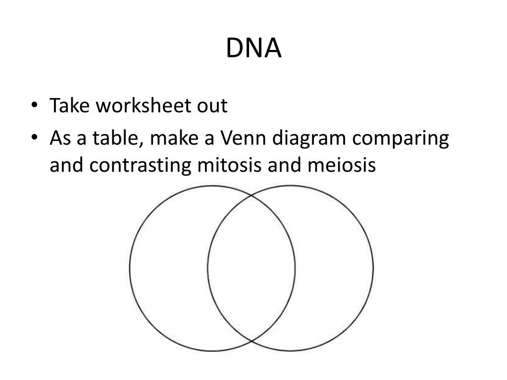 Mitosis Meiosis Venn Diagram Ppt Dna Powerpoint Presentation Id2367050