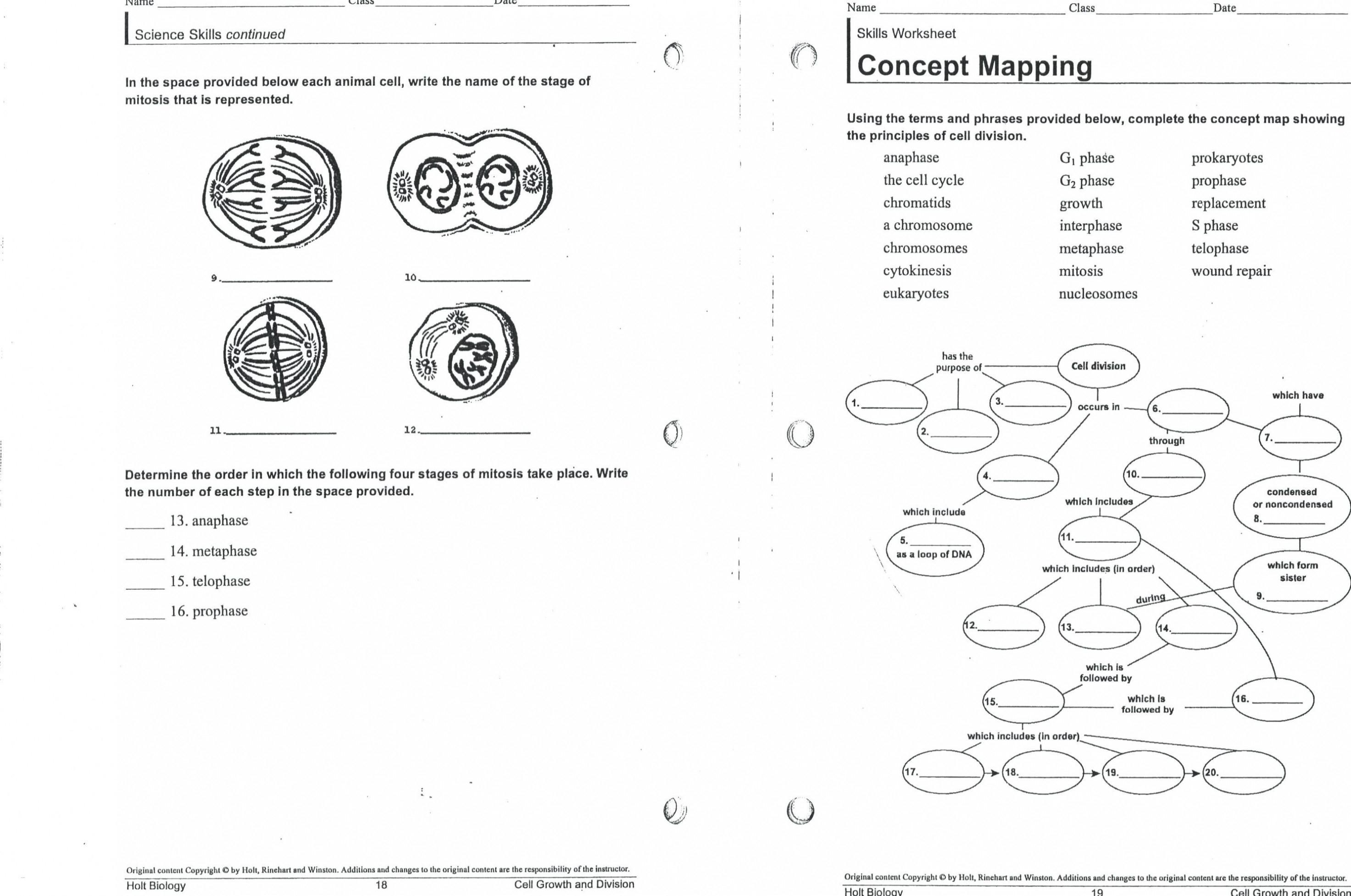 Mitosis Meiosis Venn Diagram Wiring Diagram Wiring Diagram Fabulous Plant And Animal Venn Image