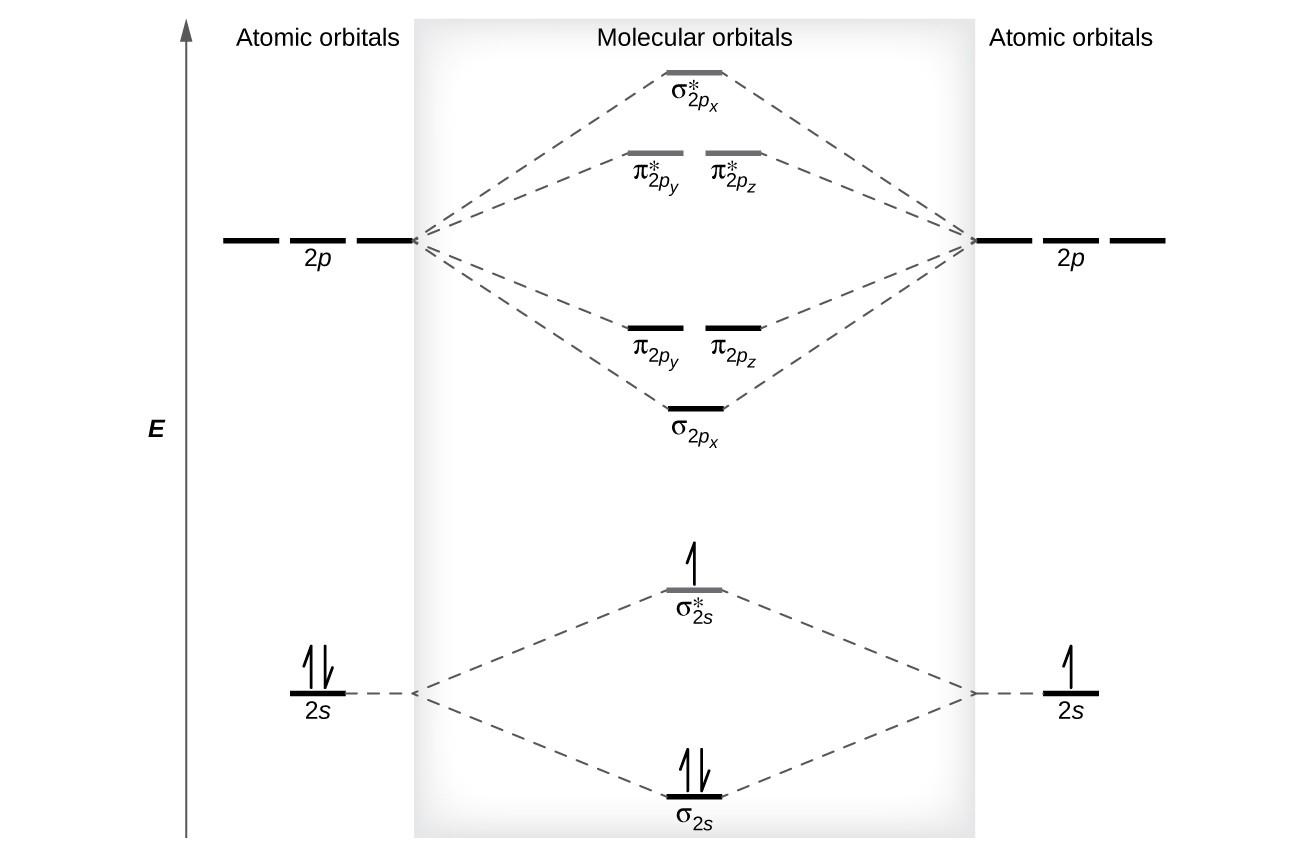 Molecular Orbital Diagram 57 Molecular Orbital Theory General College Chemistry I