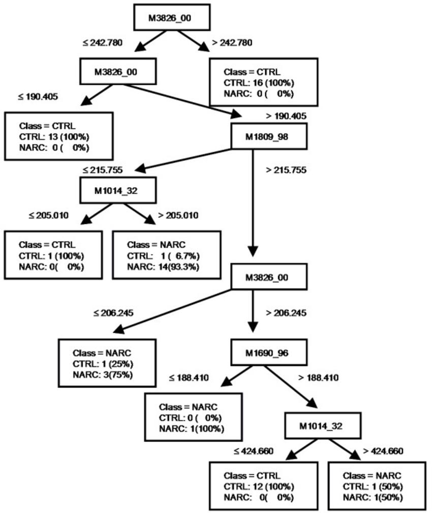 Tree Diagram Definition Scientific Tree Diagram Wiring Diagram Project