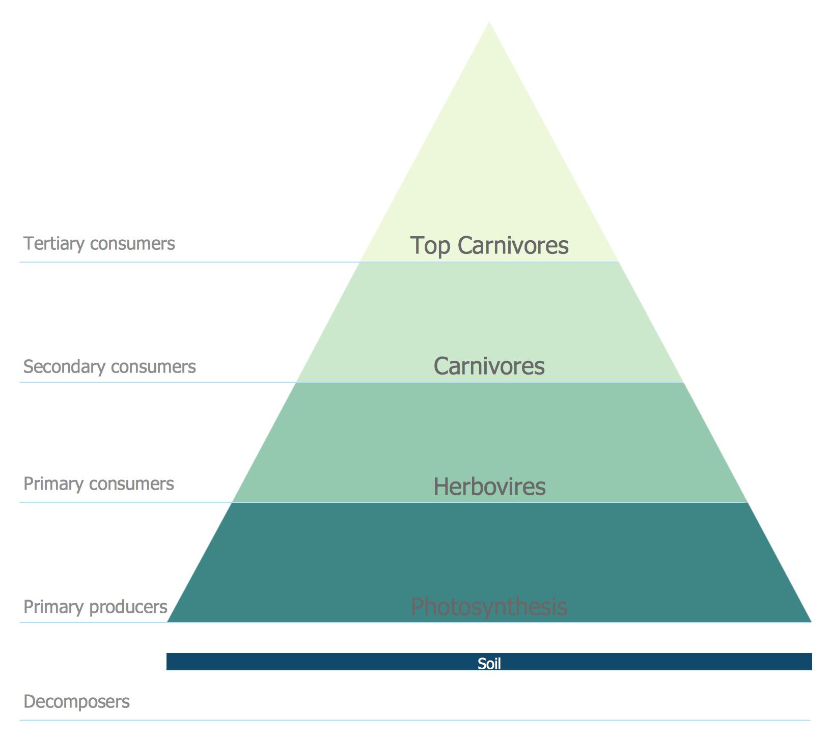 Tree Diagram Maker Diagram Chart Maker New Stock Kinship Diagram Maker New Template